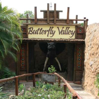 butterflyvalley